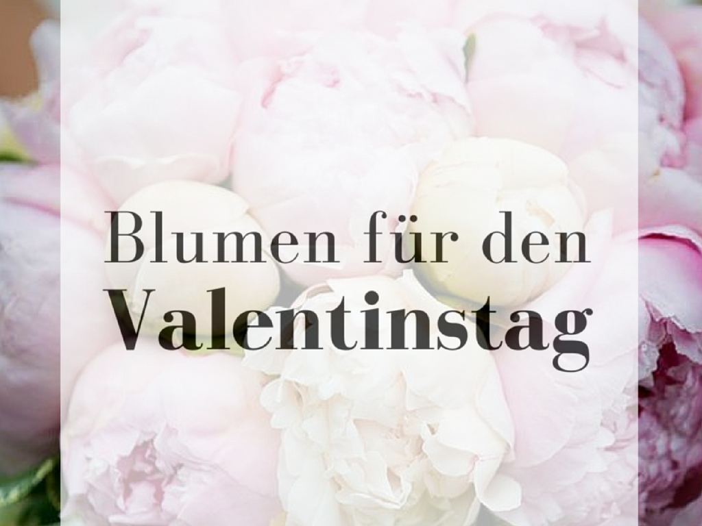 bedeutung der blumen valentinstag. Black Bedroom Furniture Sets. Home Design Ideas